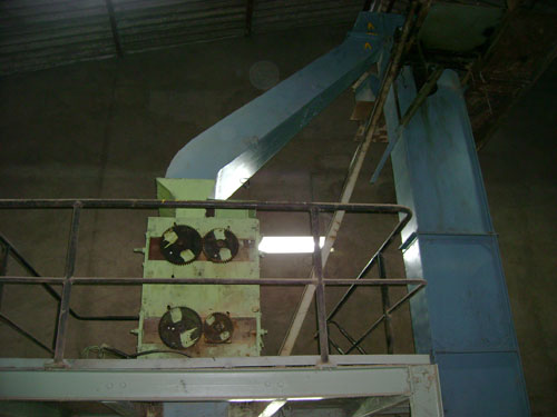 Cattle Feed Processing Machinery